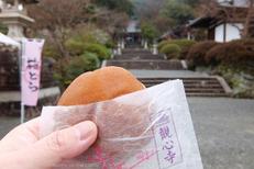 写真散歩会(DSCF0039,XQ2)2015yaotomi.jpg