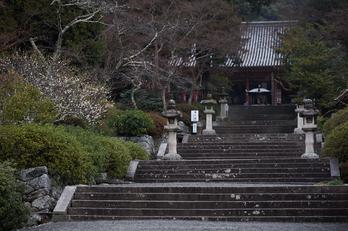 写真散歩会(DSCF0300,X-T1)2015yaotomi.jpg