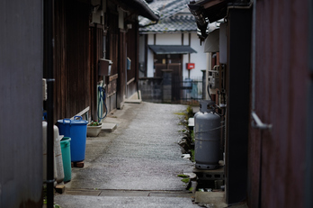 写真散歩会(DSCF0323,X-T1)2015yaotomi.jpg