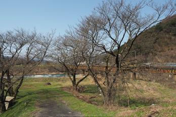 若桜鉄道,撮影地(E5210208,12 mm,f-7.1,E-M5MarkII      )2015yaotomi.jpg