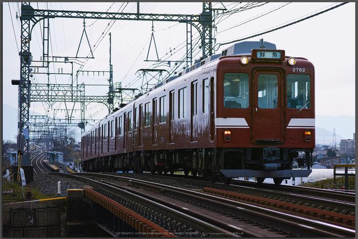 鮮魚列車,近鉄(DP3Q0325d,f-3.2,dp3Q,Top)2015yaotomi_-2.jpg