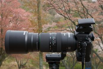 OLYMPUS,EE1(P9710982,32 mm,F10,GM5)2015yaotomi.jpg