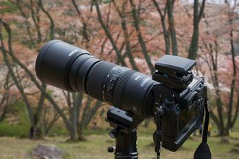 OLYMPUS,EE1(P9710999,32 mm,F6.3,GM5)2015yaotomi.jpg