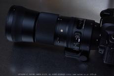 SIGMA,150_600,C(PEM10075)2015yaotomi_09.jpg