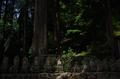 室生寺,新緑(K32_0242,F1.8,18 mm)2015yaotomi_F.jpg