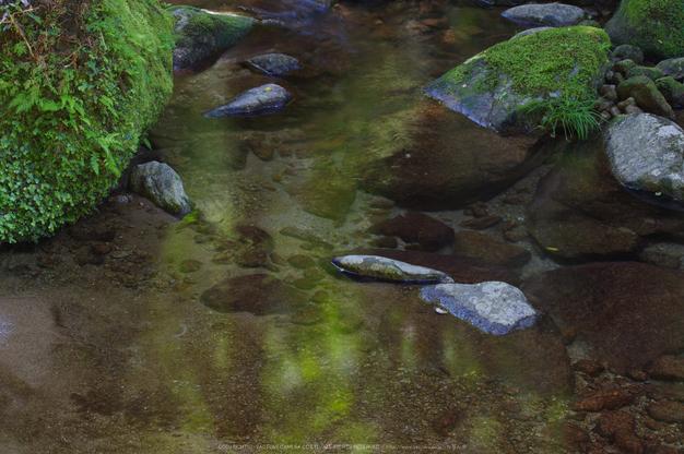 桑ノ木の滝,新緑(K32_0425,88 mm,F13)2015yaotomi.jpg