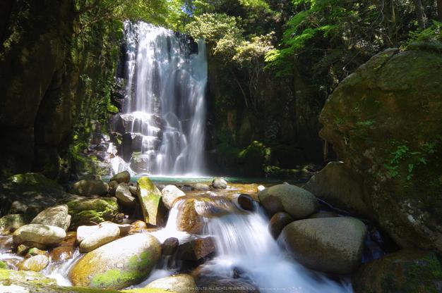桑ノ木の滝,新緑(K32_0511,12 mm,F18)2015yaotomi.jpg