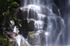桑ノ木の滝,新緑(K32_0516,55 mm,F20,FULL)2015yaotomi.jpg