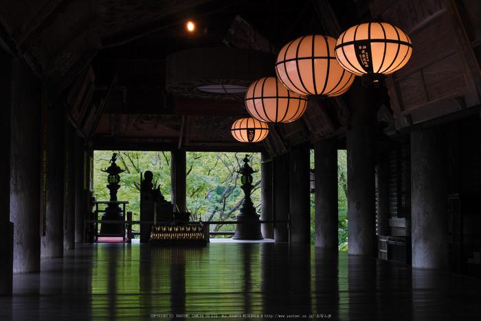 奈良,長谷寺,紫陽花(P1010269,30 mm,F7.1)2015yaotomi_.jpg
