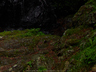 御船の滝(PEM10111,F2)2015yaotomi_.jpg