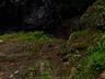 御船の滝(PEM10113,F2.5)2015yaotomi_.jpg