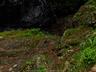 御船の滝(PEM10122,F7.1)2015yaotomi_.jpg