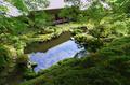 當麻寺,西南院,サツキ(K32_0587,12 mm,F9,FULL)2015yaotomi_.jpg