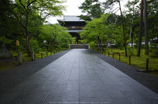 天授庵,夏の庭園(DP0Q0153,5.6,1-60 秒)2015yaotomi_.jpg