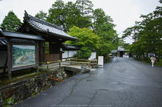 天授庵,夏の庭園(DP0Q0173,6.3,1-50 秒)2015yaotomi_.jpg