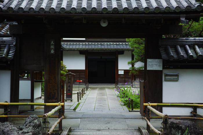 天授庵,夏の庭園(DP3Q1218,4,1-400 秒)2015yaotomi_.jpg