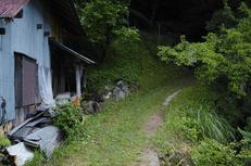 奈良御杖村,半夏生(DP2Q0116,F3.2)2015yaotomi_.jpg