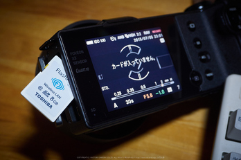 奈良御杖村,半夏生(PEM10100,F5.6)2015yaotomi_.jpg