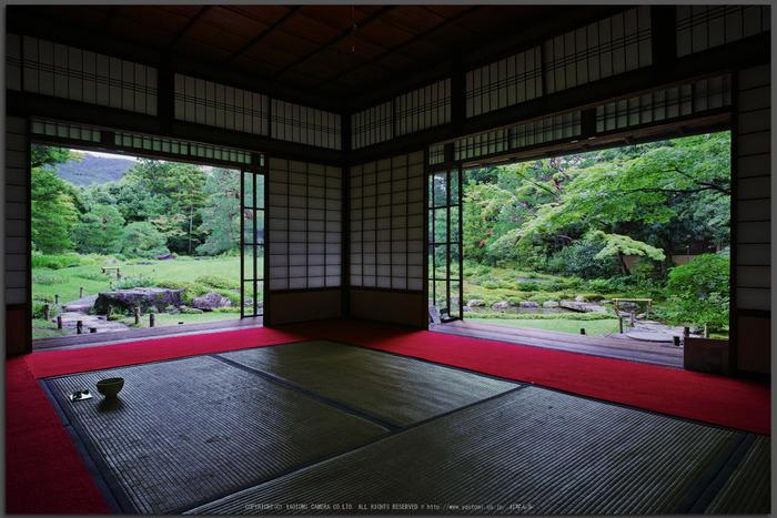 無鄰庵,夏の庭園(DP0Q0283,F6.3,1-30-秒)2015yaotomi_T.jpg