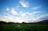 藤原宮跡,蓮(718A0444,26 mm,F2)2015yaotomi_FULL.jpg