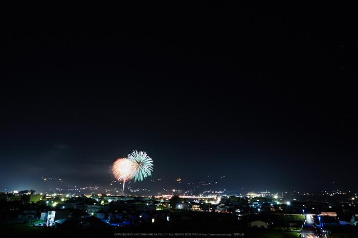 五條,吉野川花火(718A7174,24 mm,F8)2015yaotomi_.jpg