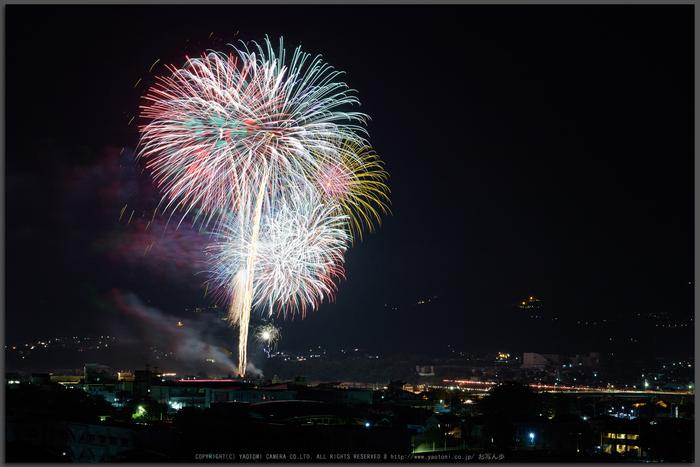 五條,吉野川花火(718A7188,G,62-mm,F10)2015yaotomi_T.jpg