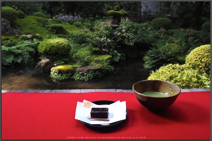 京都大原,三千院(P8220031,14-mm,F9,iso500)2015yaotomi_T.jpg