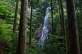 御船の滝,夏(5DS_7042,24 mm,F7.1,FULL)2015yaotomi_.JPG