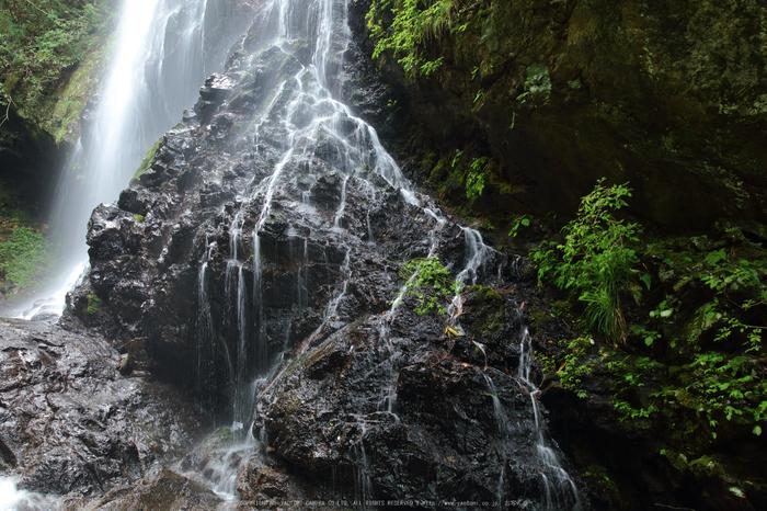 御船の滝,夏(5DS_7108,35 mm,F8)2015yaotomi_.jpg