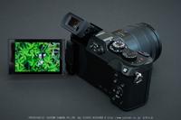 Panasonic,GX8_2015yaotomi(05).jpg