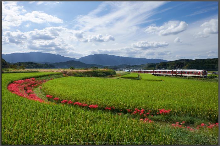 近鉄,壺阪山駅(DSCF9241,16-mm,F5.6)2015yaotomi_T.jpg