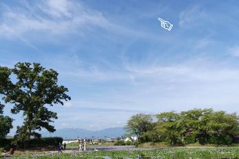 Panasonic,FZ300(P1030180,5-mm,F3.5,100)2015yaotomi_s.jpg