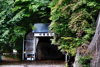 大台ヶ原,紅葉(DSCF4645fe,55 mm,F4.5,iso200)2015yaotomi_.jpg