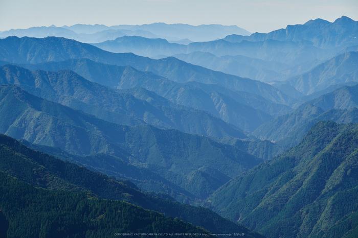 大台ヶ原,紅葉(DSCF5028,98 mm,F8)2015yaotomi_.jpg