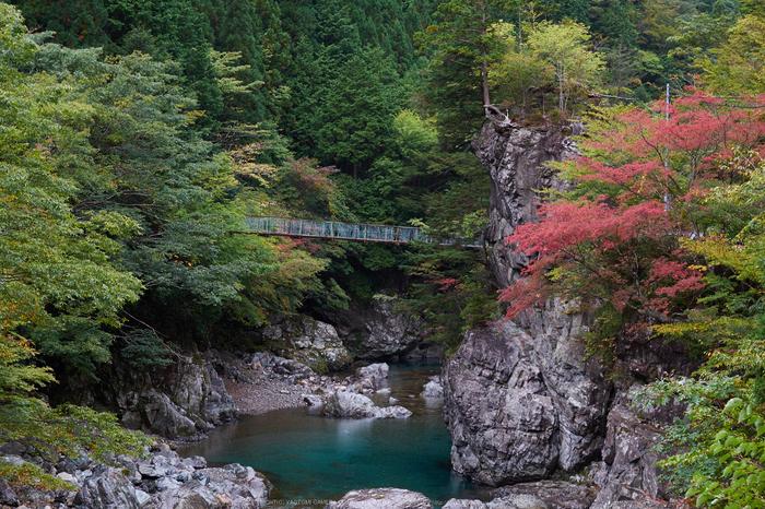 天ノ川,紅葉(DSCF4681,50 mm,F7.1,iso200)2015yaotomi_.jpg