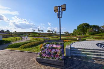 馬見丘陵公園(P1070419,7 mm,F13)2015yaotomi_ 1.jpg