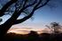 屏風岩公苑,紅葉(IMG_8235,20 mm,F7.1,iso100)2015yaotomi_ 1.jpg