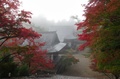 神護寺,紅葉(K32_3122fs(2),18 mm,F10,iso100)2015yaotomi_ 1.jpg
