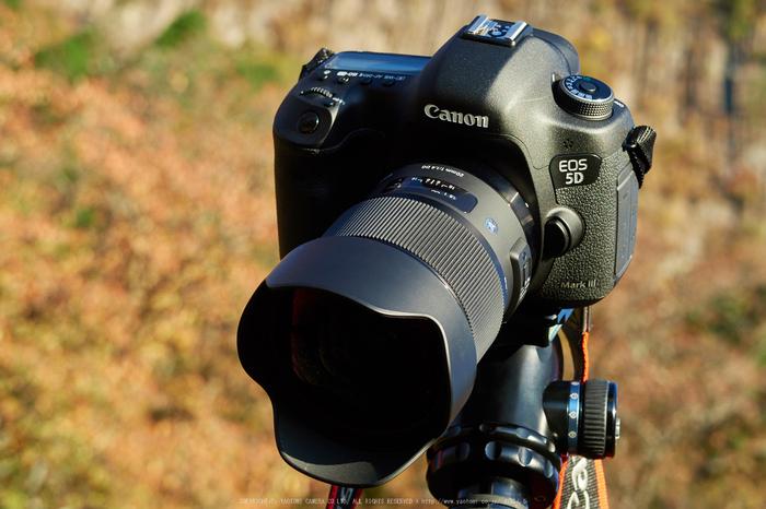 SIGMA-20mm-F1.4-DG-HSM,Art_IMG_2535,2015yaotomi_a.jpg