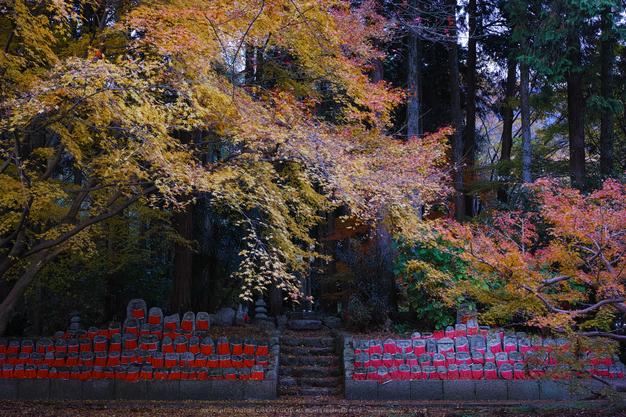 九品寺,紅葉(DP2Q0128,30 mm,F8)2015yaotomi_.jpg