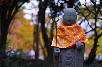 九品寺,紅葉(DP3Q1314,50 mm,F2.8)2015yaotomi_.jpg