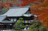明日香,岡寺,紅葉(DP3Q1412f,50 mm,F7.1,20151206yaotomi.jpg