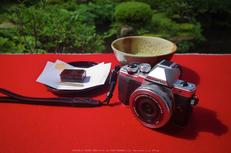 OM-D,E-M10II_2015yaotomi_02.jpg