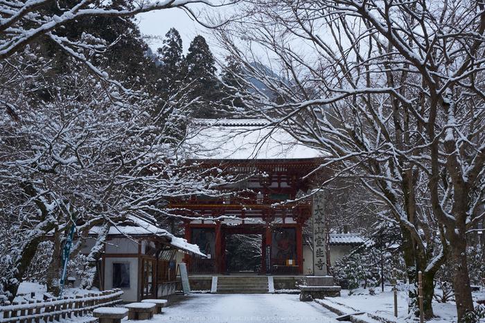 奈良,室生寺,雪景(EM100047,20 mm,F7.1)2016yaotomi.jpg
