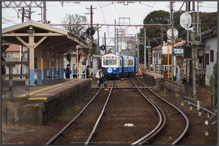 あすなろう鉄道(PENF0162,75-mm,F1.8,iso200)2016yaotomi_T.jpg