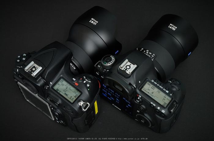 Milvus(DSC_0016,35 mm,F22)2016yaotomi.jpg