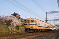 大和郡山城跡,桜(K32_6916F,26 mm,F9)2016yaotomi_ 1.jpg