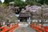 室生寺,桜(DSCF0162f,16 mm,F7.1,iso200)2016yaotomi_.jpg