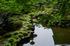 當麻寺西南院,サツキ_EM110233FL,2016yaotomi_.jpg