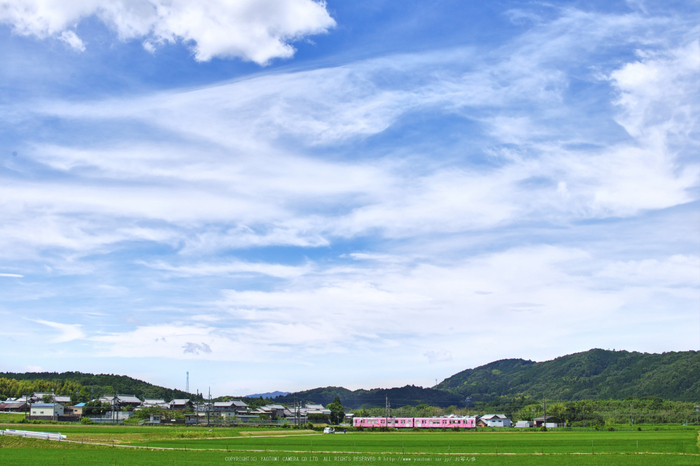 伊賀平野,伊賀鉄道(SDQ_0625,30 mm,F6.3,iso100)2016yaotomi_ 1.jpg